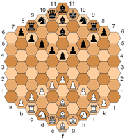 Glinski's Hexagonal Chess, one of many chess variants