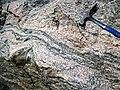 Gneiss (Archean; Windy Lake Northwest roadcut, Sudbury Impact Structure, Ontario, Canada) 2 (32792412547).jpg