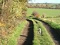 Gorse Lane - geograph.org.uk - 282347.jpg
