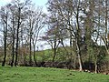 Grazing Land by Spittle Brook, Staffordshire - geograph.org.uk - 680663.jpg