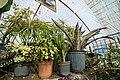 Greenhouses in qom عکس های گلخانه دنیای خار در روستای مبارک آباد قم 23.jpg