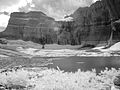 Grinnell and Gem Glacier (4119267867).jpg