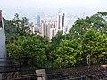 HK 香港 VP 維多利亞山頂 Victoria Peak Tram 白加道 Barker Road stop April 2020 SSG 14.jpg