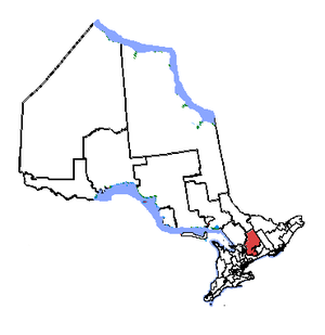 Haliburton—Kawartha Lakes—Brock - Haliburton—Kawartha Lakes—Brock in relation to other Ontario electoral districts (2003 boundaries)