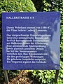 Hallerstraße 6, 8 (Hamburg-Rotherbaum).Tafel.ajb.jpg