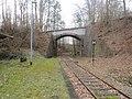 Haltepunkt Amerika der Muldentalbahn (6) Straßenbrücke.jpg