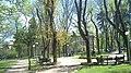 Halytskyi District, Lviv, Lviv Oblast, Ukraine - panoramio (209).jpg