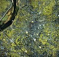 Hashima city center area Aerial photograph.1987.jpg