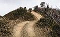 Heading up - panoramio.jpg