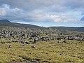Helgafellssveit - panoramio (11).jpg