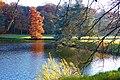 Herbst im Park - Blätter, Bäume, Seeufer und Wege im Wandel der Jahreszeiten. (14).jpg