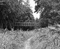 Hermitage Woods Footbridge, Basingstoke Canal - geograph.org.uk - 582745.jpg