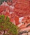 Hiking Bryce Canyon 9-10 (15235190821).jpg