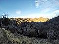 Hiking Towsley Canyon (11674873564).jpg