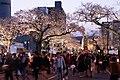 Hitachi Sakura Festival, Ibaraki 16.jpg