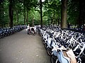 Hoge Veluwe free bikes1.jpg