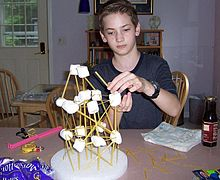 Homeschooler with Project.jpg