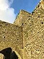 Hore Abbey, Caiseal, Éire - 32711735538.jpg