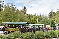 Horse drawn Tour in Vancouver Stanley Park (30851833418).jpg