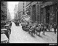 Horse drawn parade in Pitt Street, Sydney (8159415758).jpg