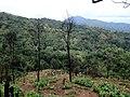 Hpa-An, Myanmar (Burma) - panoramio (198).jpg
