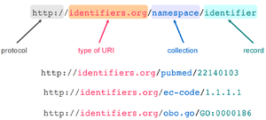 Identifiers.org - Structure and examples of Identifiers.org URIs.