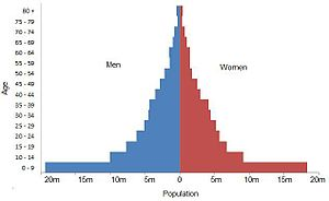 2001 Census of India - Image: India Muslim census 2001 pyramid