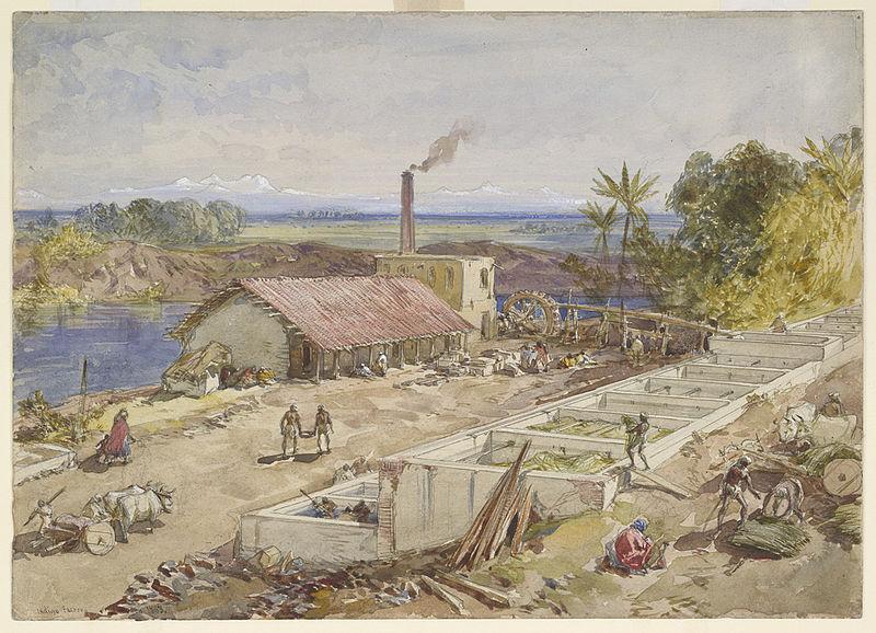Bengal Painting British Blue Painting