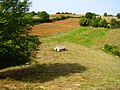 Istarski kažun - panoramio.jpg