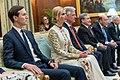 Ivanka and Jared Kushner at Indian Presidential Palace.jpg