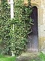 Ivy covered door at St John's Church - geograph.org.uk - 495707.jpg