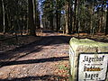 Jägerhof-Wald-150313-014.JPG
