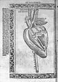 Jacopo Berengarius da Carpi, Isagoge breves Wellcome L0031348.jpg