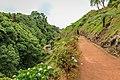 Jardim Botânico da Ribeira do Guilherme.jpg