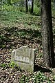Jewish cemetery Zelechow IMGP3158.jpg