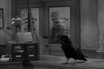 Jimmy the raven in It's a Wonderful Life.png