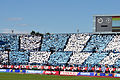Jubilo Iwata - 2010 J-league cup final - fans.jpg