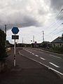 Kagoshima pref road 37 at Hiyoshi-cho Hioki.JPG