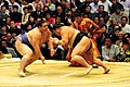 Kaio vs. Chiyotaikai March 2009.jpg
