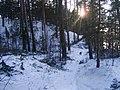 Kalni - panoramio.jpg