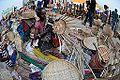 Kalyani Bayadh - Kolkata 2014-12-06 1209.JPG
