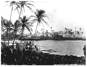 Holualoa Bay - The area in about 1890 was less overgrown, but already had one modern house