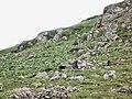 Karlovo, Bulgaria - panoramio (14).jpg