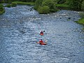 Kayaking at Yair - geograph.org.uk - 502551.jpg