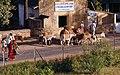 Khajuraho-40-Lasttiere-1976-gje.jpg