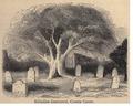 Kildallan Relig Graveyard 1880.png