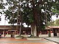 Kinmen Qing Military Governor Office - main courtyard - DSCF9422.JPG