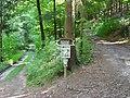 Kirchdornberg, Kammweg durch Wald - panoramio.jpg