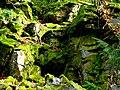 Kirschweiler, Naturschutzgebiet Silberich – Kirschweiler Festung - panoramio (1).jpg