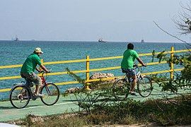 There are bike paths all over the Kish Island